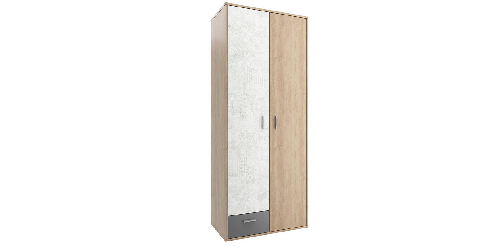 Шкаф распашной двухдверный Алекс (дуб небраска/антрацит)